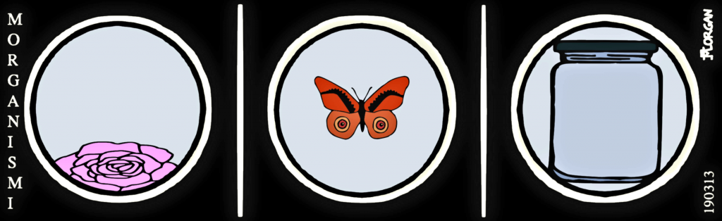 Morgsarja20190313